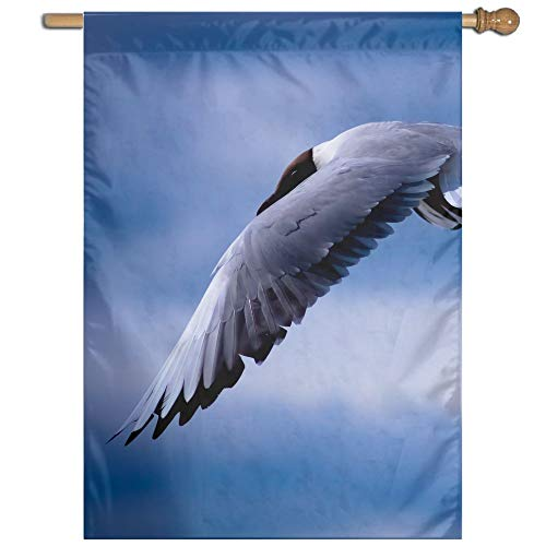 (Garden Flag Seagull Flying Lawn Banner Outdoor Yard Home Flag Wall Decoration Flag 27