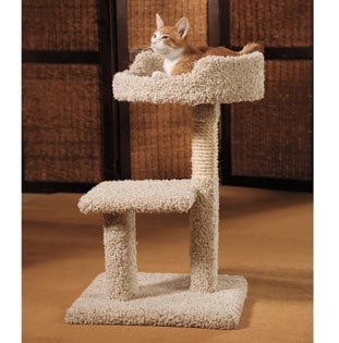 Claw Tuff Kitty Play Yard with Loft Bed ()
