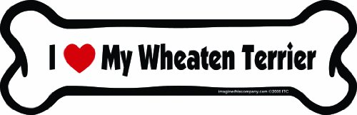 Imagine This Bone Car Magnet, I Love My Wheaten Terrier, 2-Inch by 7-Inch
