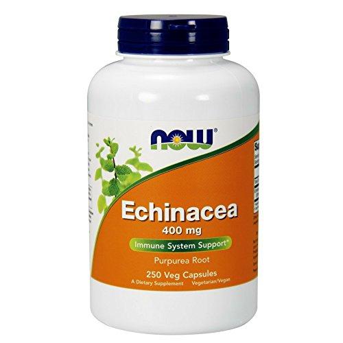 NOW Echinacea Root 400mg, 250 Veg Capsules
