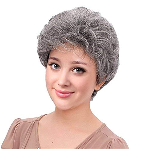 BESTUNG Short Silver Gray Synthetic Wigs Fluffy Little Curly Wavy Mom Grey Costume Wigs For Old Middle Age Women Office Lady (Silver Grey)]()