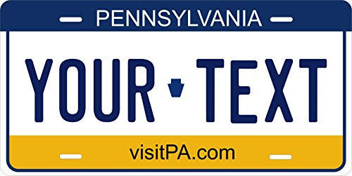 Pennsylvania 2004 Personalized Custom Novelty Tag Vehicle Car Auto Motorcycle Moped Bike Bicycle License Plate
