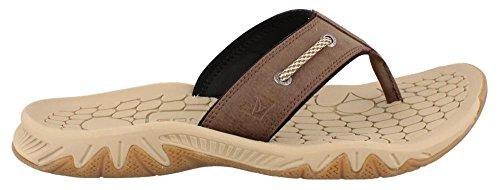 Sperry Men's, Grand Rapids Thong Sandal Dark Brown 10 M (Thong Men Sandals)