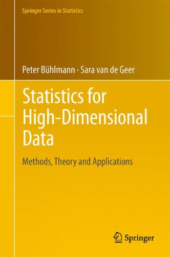Statistics for High-Dimensional Data: Methods, Theory and Applications (Springer Series in Statistics)