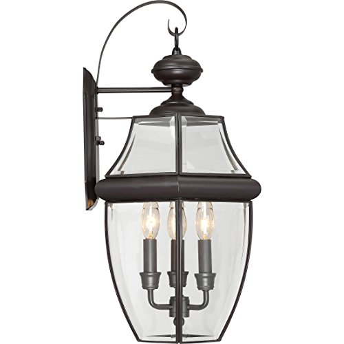 Torbrook Outdoor Wall Lantern Lighting for Garage Exterior, Brown, Clear Glass, Extra Large 3-Light 180 Watts, Dark ()