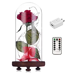 Beauty and The Beast Red Rose kit Enchanted and Led Light with Fallen Petals in Glass Dome on Wooden Base Gift for Valentine's Day Christmas Home Decor Party Wedding Anniversary 39