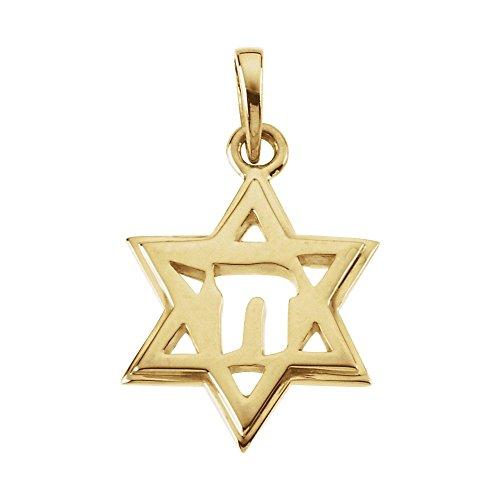 FB Jewels 14K Yellow Gold 19x14mm Star of David Chai Pendant