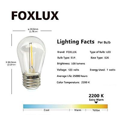 FOXLUX String Lights