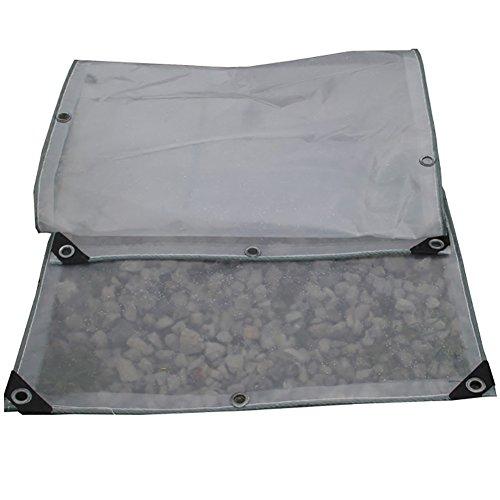 ハウジング磨かれた条約GUOWEI-pengbu ターポリン カバー 透明 耐寒性 防水 二重層 耐久性のある プラスチック アウトドア 個人的なカスタマイズ (色 : クリア, サイズ さいず : 2.9x2.9m)