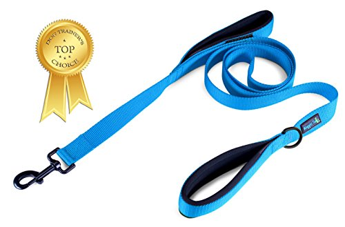 Soft &Thick Dual Handle Dog Leash, Premium Nylon Double Neoprene Padded Handles for Ultimate Control 2 lengths-6ft or 1ft for Medium, Large or ExLarge Dog EZ Walker by Waggin' Tails Co (Bright Blue) - 1' Handle