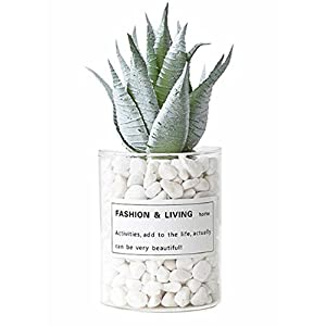 East Majik Artificial Plants Fake Plants Artificial Simulation Rose Aloe 20