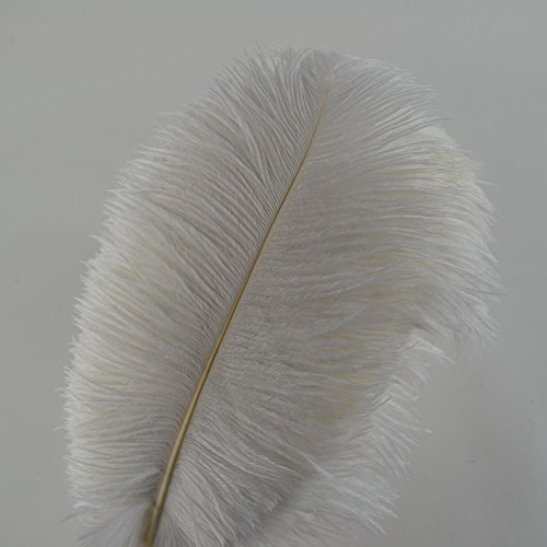 Sowder 10pcs Ostrich Feathers 12-14inch(30-35cm) for Home Wedding Decoration (12 Ostrich)