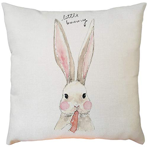 Funnygals Easter Pillow Cases, Easter Printing Dyeing Sofa Bed Home Decor Pillow Cover Cushion Cover 18