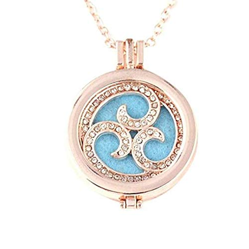 Windoson Deals Aromatherapy Necklace Vintage Locket Essential Oil Diffuser Necklace and Pad Fragrance Jewelry Gift (C)