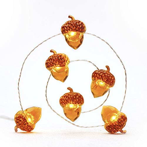 Impress Life Fall Winter Fairy String Lights, Ice Age Acorn Theme 10 ft 40 LEDs, with Remote Battery-Powered & Timer, Novelty DIY Decorating for Novelty Holiday, Wedding, Harvest, Parties Decorative