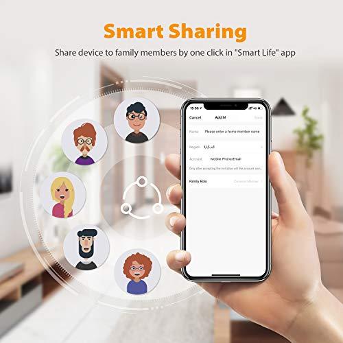 iClever WiFi Door Window Sensor, Smart Sensor Contact Door Window Sensor, Compatible with Alexa Google Assistant, No Hub Required, Wireless Security Alarm Door Open Chime for Home Bussiness Alert