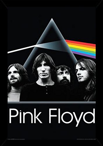 Pink Floyd Dark Side Group Poster in a Black Poster Frame  2