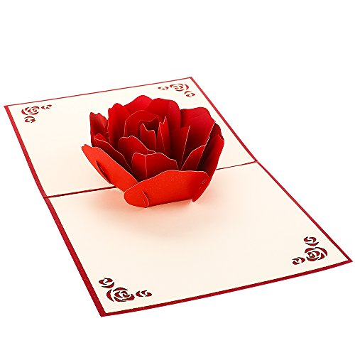 Greeting Cards Blooming Rose 3D Pop Up Cards, Breezypals Pop Up Thank You Card for All Occasions - Valentines Day, Anniversary, Birthday,Date Night, Wedding, Gift, Engagement