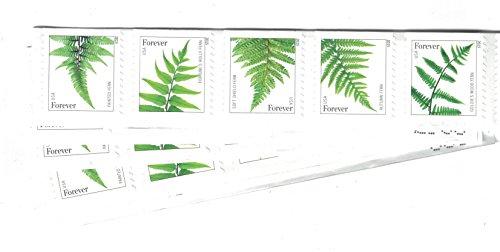 USPS Ferns Stamps - 50 Forever Stamps (5 Strips of 10 Stamps) (Strip Stamp)