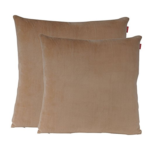 soft decorative pillows. Shinnwa Velvet Super Soft Decorative Throw Pillow Case Solid Twin Side  Cushion Covers for Sofa 18 x Beige Pack of 2 Pillows Couch Amazon com