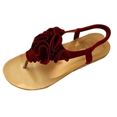 Chanclas Zapatos de Cuero Sandalias Moda Mujer C Cordones Bailarinas Sandalias Clip Las Toe de Bohemia Verano Zapatillas De y ASHOP Planas Playa qwY4USF