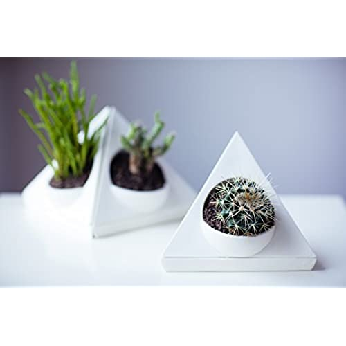 Attractive Unique Ceramic Planter Pot For Succulent Cactus And Airplant   Includes  Self Watering Saucer Drip Tray, Drainage Hole, Triangle Corner Shape, ...