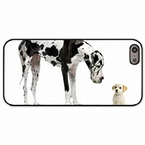 iPhone 5 5S Black Hardshell Case dalmatian puppy adult Desin Images Protector Back Cover