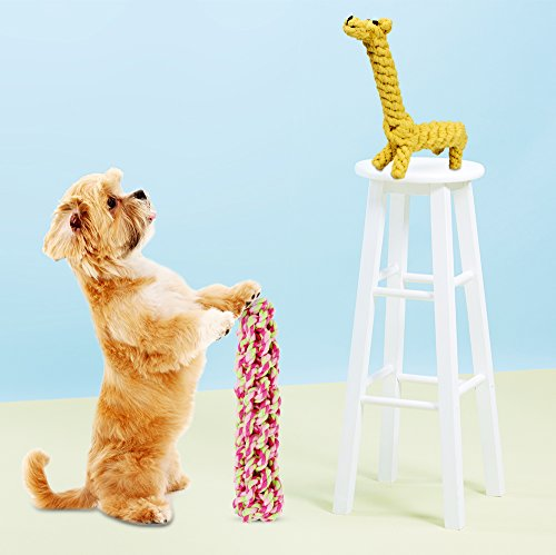 Unique Dog Toys For Aggressive Chewers Wow Blog