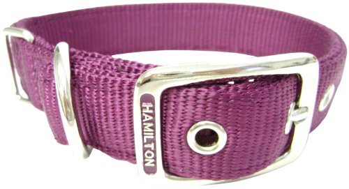 Hamilton Double Thick Nylon Deluxe Dog Collar, 1-Inch by 22-Inch, Wine, My Pet Supplies