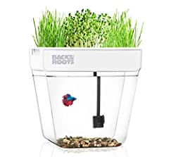 Bring the fun of aquaponics inside with this closed-loop ecosystem Water Garden from Back to the Roots! This mini aquaponics aquarium requires 50% fewer cleanings than traditional fish tanks! The fish waste fertilizes the plants, and the plan...