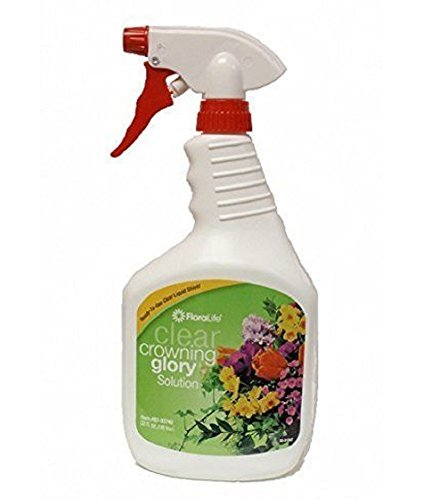 Crowning Glory Flower Spray 32 Fl. Oz from Floralife