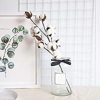 Jullyelegant Flor de simulación 10 Algodón Natural Ramas Fabricantes Decoración del hogar Ramos de Flores Flor de la Planta Flores Falsas de Pared: Amazon.es: Hogar