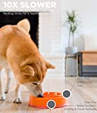 Outward Hound Fun Feeder Mini Coral Orange