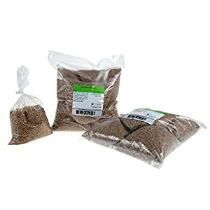 "Certified Organic Hard Red Wheat Sprouting Seed: 10 Pre-Measured Bags for 10""x20"" Trays (Approx 10 Lb) For Growing Wheatgrass to Juice, Grind for Flour & Bread, Ornamental Wheat Grass – Non-GMO"