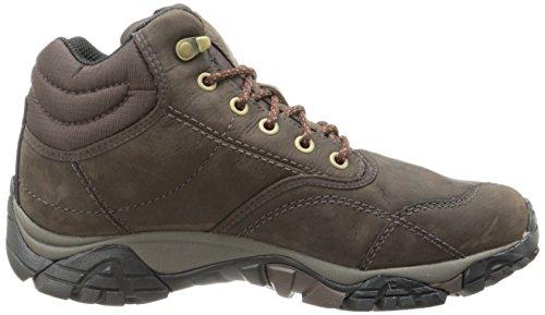 Mid Hautes Rover Moab De Randonnée Homme Chaussures Expresso Merrell OnTxa7