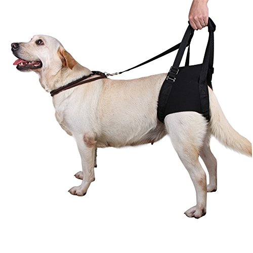 lalawow-dog-support-harness-for-rear-legs-injuries-joints-rehabilitation-elderly-pet-aid-l-2360-2750