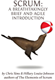Scrum: a Breathtakingly Brief and Agile Introduction