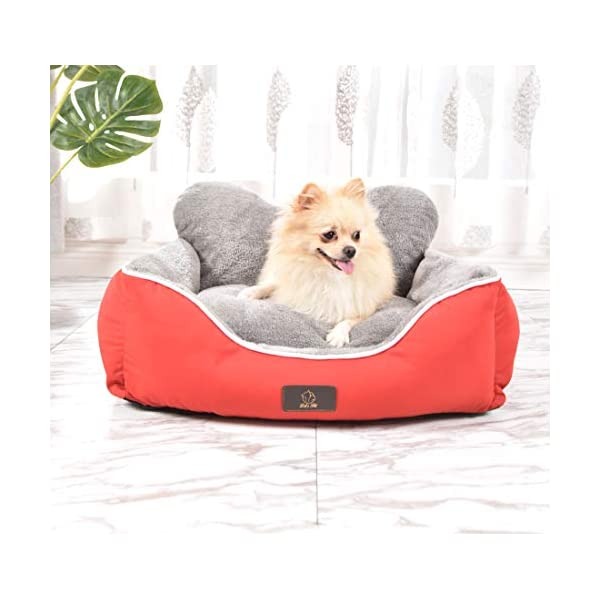 Lets-pet-Dog-Bed-or-cat-BedMedium-Size-Pet-Bed-for-dogie-Puppy-Bed-Traditional-Dog-Sofa-Living-Room-Couch-BedRemovable-Cover-with-Zipper-can-be-Cleaned-for-SmallMedium-Dog