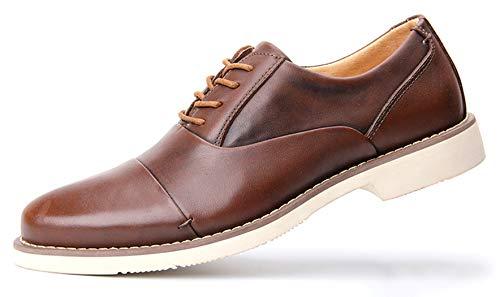 Uomo Classico Marrone Oxford Stringate Basse SimpleC Scarpe Confortevole xYw5qayy6v