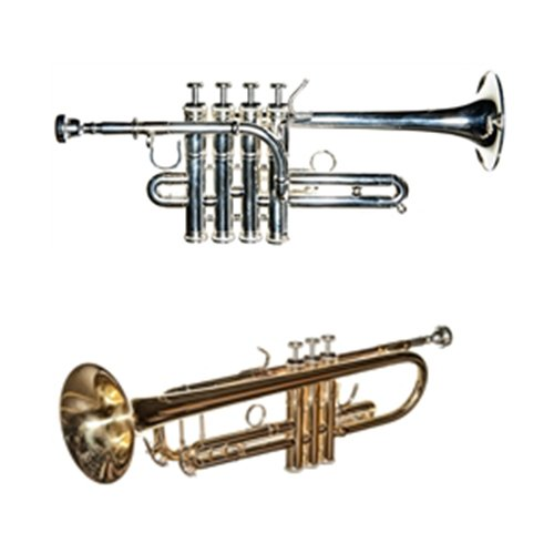 Band Directors Choice Trumpet Pack - Lacquer Bb Trumpet & Piccolo Trumpet by Band Directors Choice