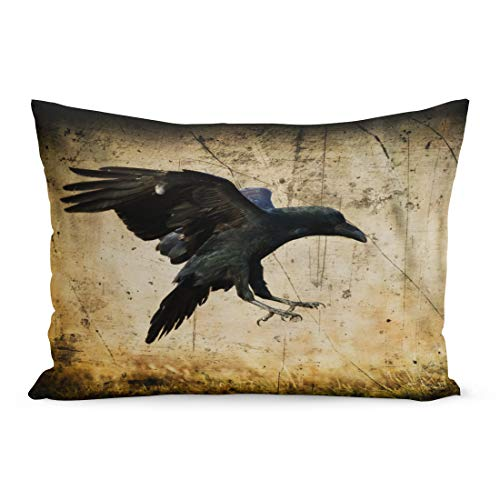 Semtomn Throw Pillow Covers Landing Black Raven Corvus Corax in Moonlight Scary Creepy Gothic Setting Cloudy Night Halloween Old Pillow Case Lumbar Pillowcase for Couch Sofa 20 x 26 inchs ()