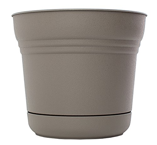 Bloem SP1060 Saturn Planter, 10-Inch, Peppercorn - Apollo Plastic Deck Planters