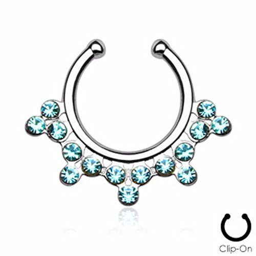 Snowflake with Gems Non-Piercing WildKlass Septum Hanger (Sold by Piece) (Snowflake Piercing Gem compare prices)