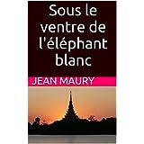 Sous le ventre de l'éléphant blanc (French Edition)