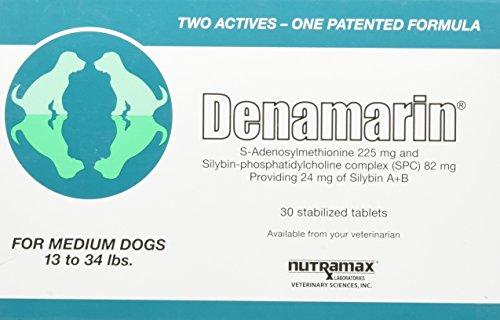 Denamarin Liver Support Supplements