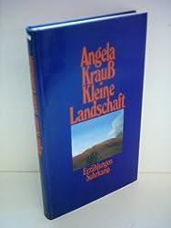 Kleine Landschaft: Erzahlungen (German Edition)