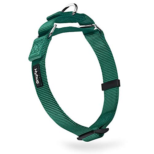 Heavy Duty Nylon Anti-Escape Martingale Medium Boy and Girl Dog Collar - Walking Training Daily Use.