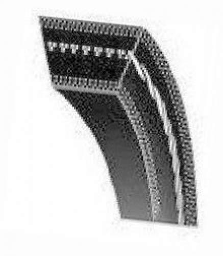 Z22 V Belt (Medway)