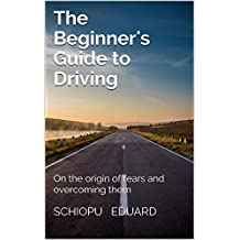 The Beginner's Guide to Driving: On the origin of fears and overcoming them