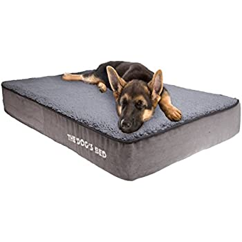 Amazon.com : Stella Beds Elevated Memory Foam Orthopedic